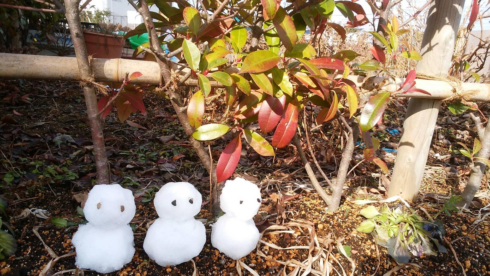 雪の子たち